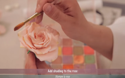 Create Sweet Flowers with Anna Rosa Maggio