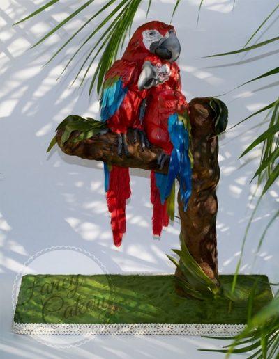 Parrots_Collaba