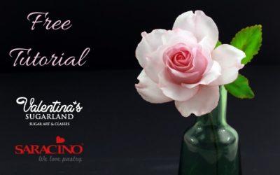 CREATE A BEAUTIFUL ROSE