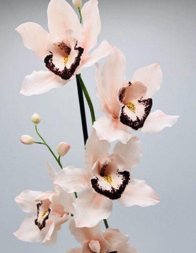 cassie brown saracino flower paste 3