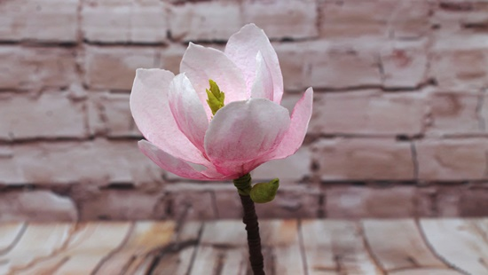 WAFER PAPER MAGNOLIA