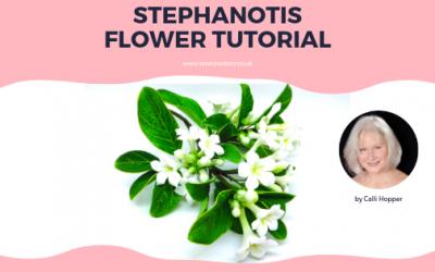 STEPHANOTIS FLOWER TUTORIAL