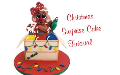 CHRISTMAS SURPRISE  BOX