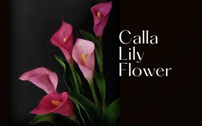 CALLA LILY FLOWER TUTORIAL